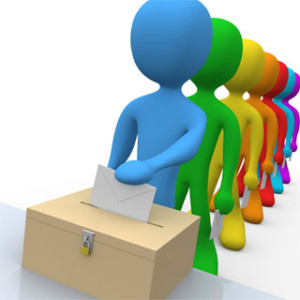 29_voting